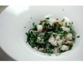 a-taste-of-riviera-nayarit