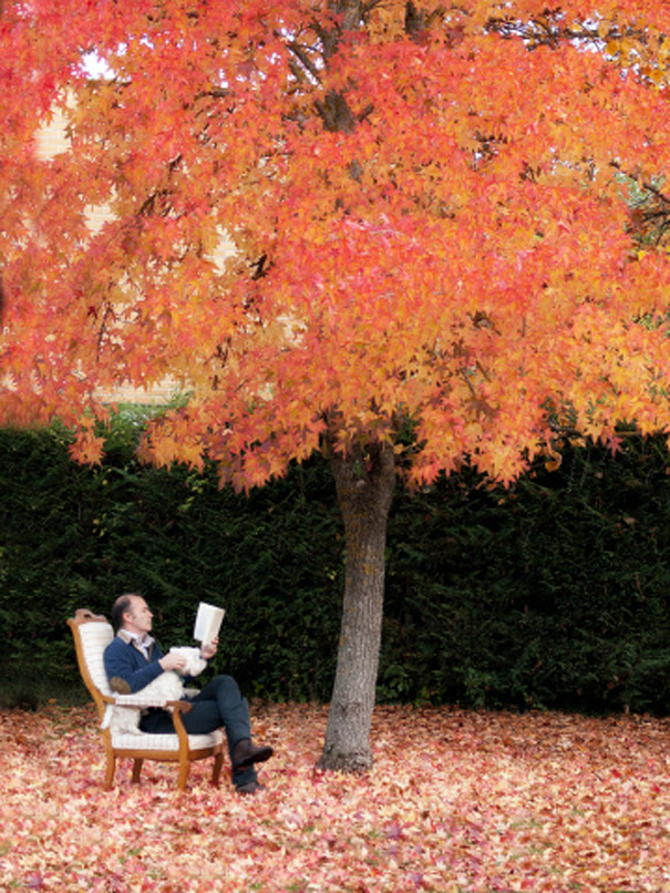 books-fall