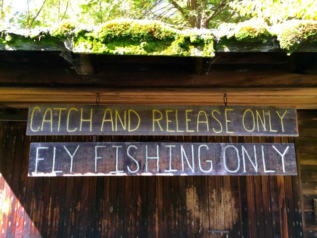 Glendorne-Fly-Fishing