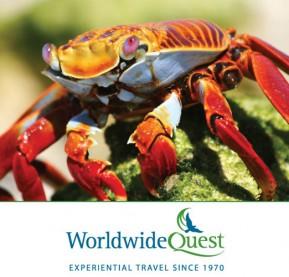 crab_questcontest