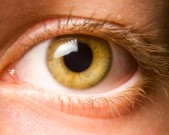 eyelicking