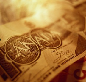 money-dollar