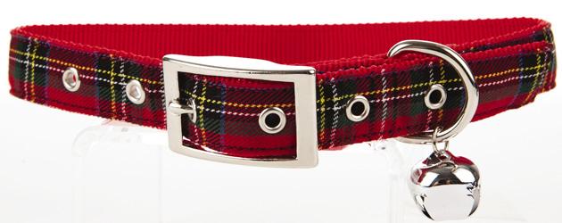pets-collar
