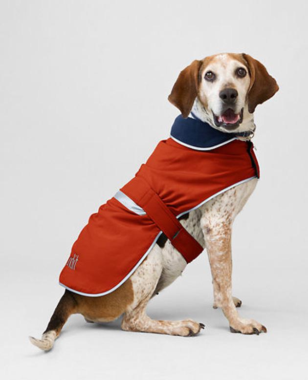 pets-squall-jacket