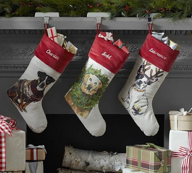 pets-stocking