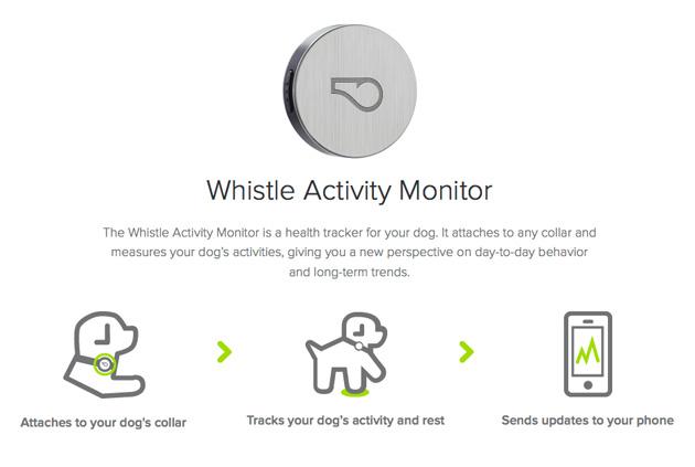 pets-whistle-app