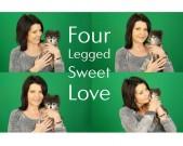 four-legged-sweet-love