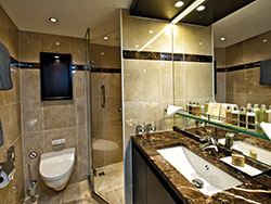 Vista_Interior_Panorama_Suite_bathroom-250x188