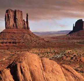 garden-Desert-Landscape-(2)