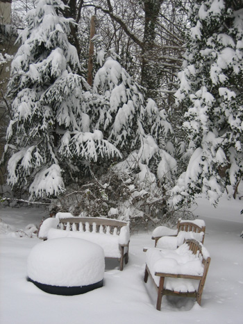 garden-snow-and-firepit