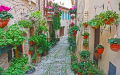 Spello's streets are empty on a Sunday – a stark contrast to Assisi's bustling piazzas only a 15 minute coach ride away.