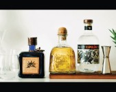 zoomermag_may2015_tequila1-610x381