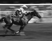o-rodeio-calgary-stampede-18-JH