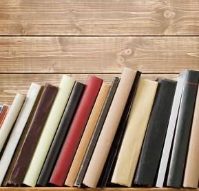 booksonshlef