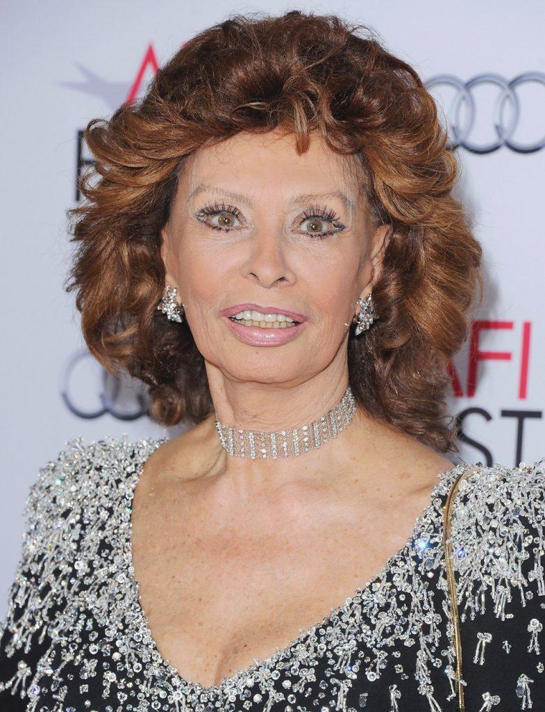 HOLLYWOOD, CA - NOVEMBER 12: Sophia Loren arrives at the AFI FEST 2014 Presented By Audi A Special Tribute To Sophia Loren at Dolby Theatre on November 12, 2014 in Hollywood, California. (Photo by Jon Kopaloff/FilmMagic)
