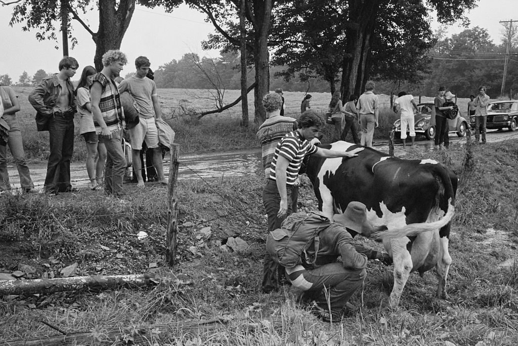 A group of people milk a cow at the Woodstock Music & Art Fair, Bethel, NY, August 15, 1969. (Photo by Baron Wolman/Iconic Images/Getty Images)