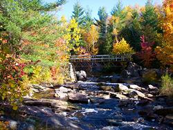 Northeastern Ontario_Advertorial_Image6