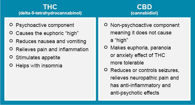 Does The Human Body Naturally Produce Thc