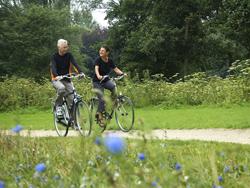 Active senior couple biking in the park, enjoying their retirement.