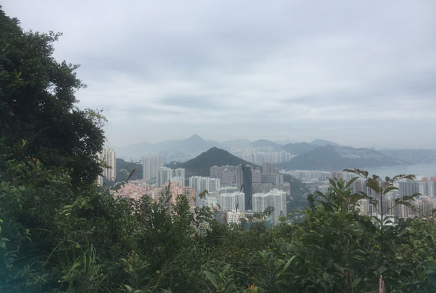 hkview