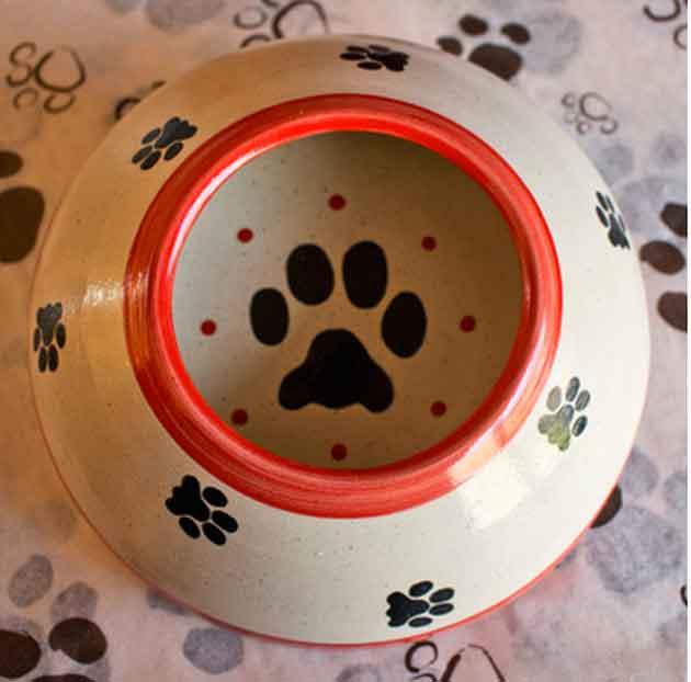 dog-bowl