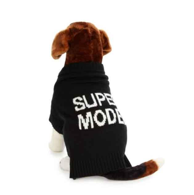 dog-cashmere-sweater