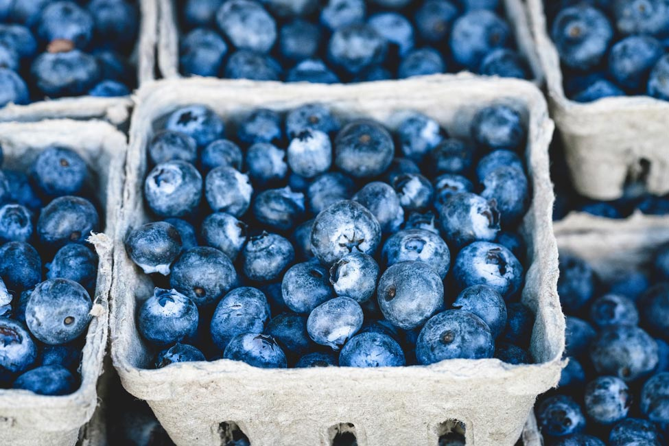 Cartons of ripe blueberries