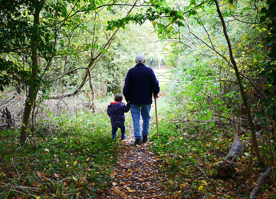A child and grandfather walk down a hiking path in a forest.