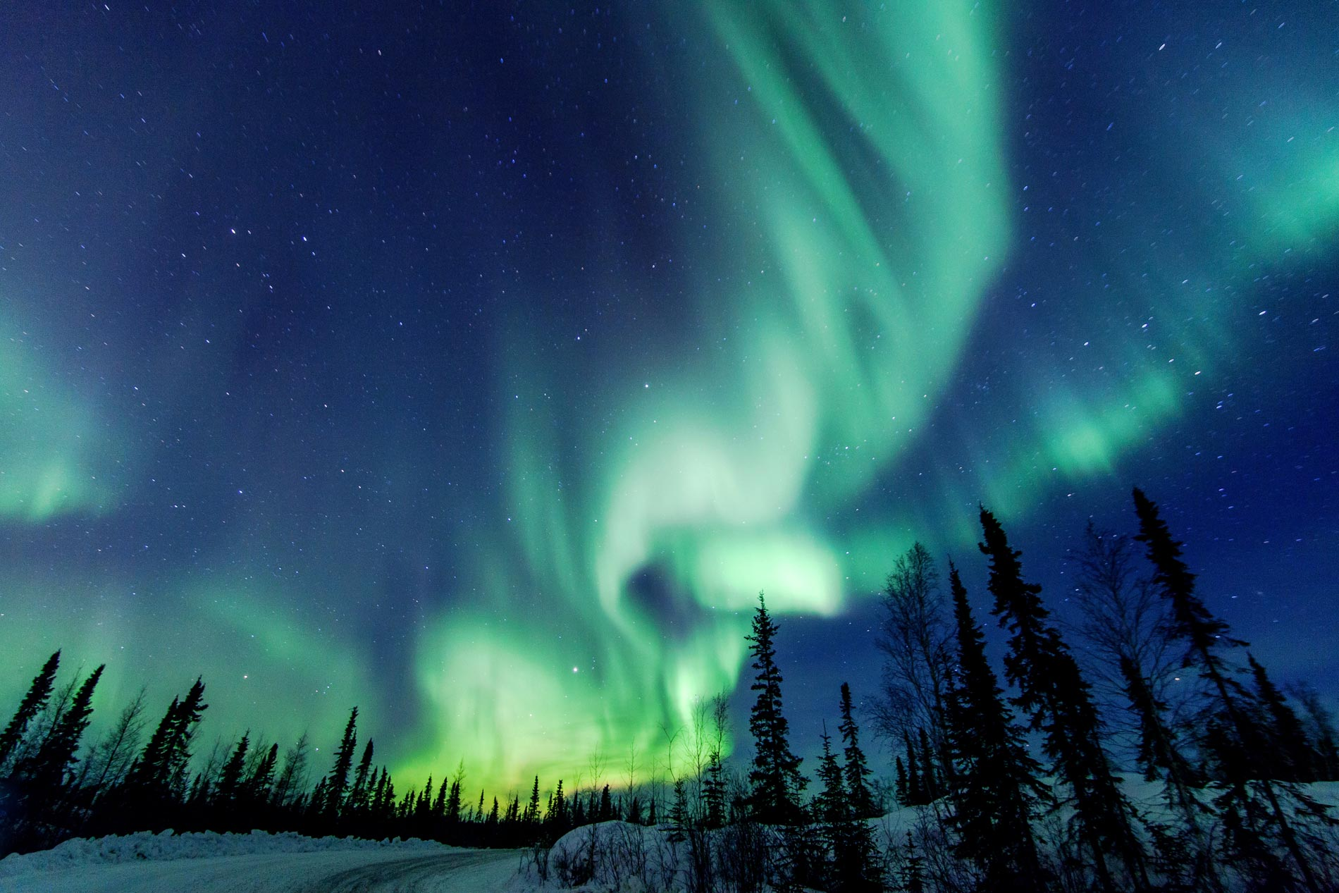 Aurora Borealis close to Yellowknife in the Northwest Territories in Canada. Photo: Vincent Demers Photography/Getty Images