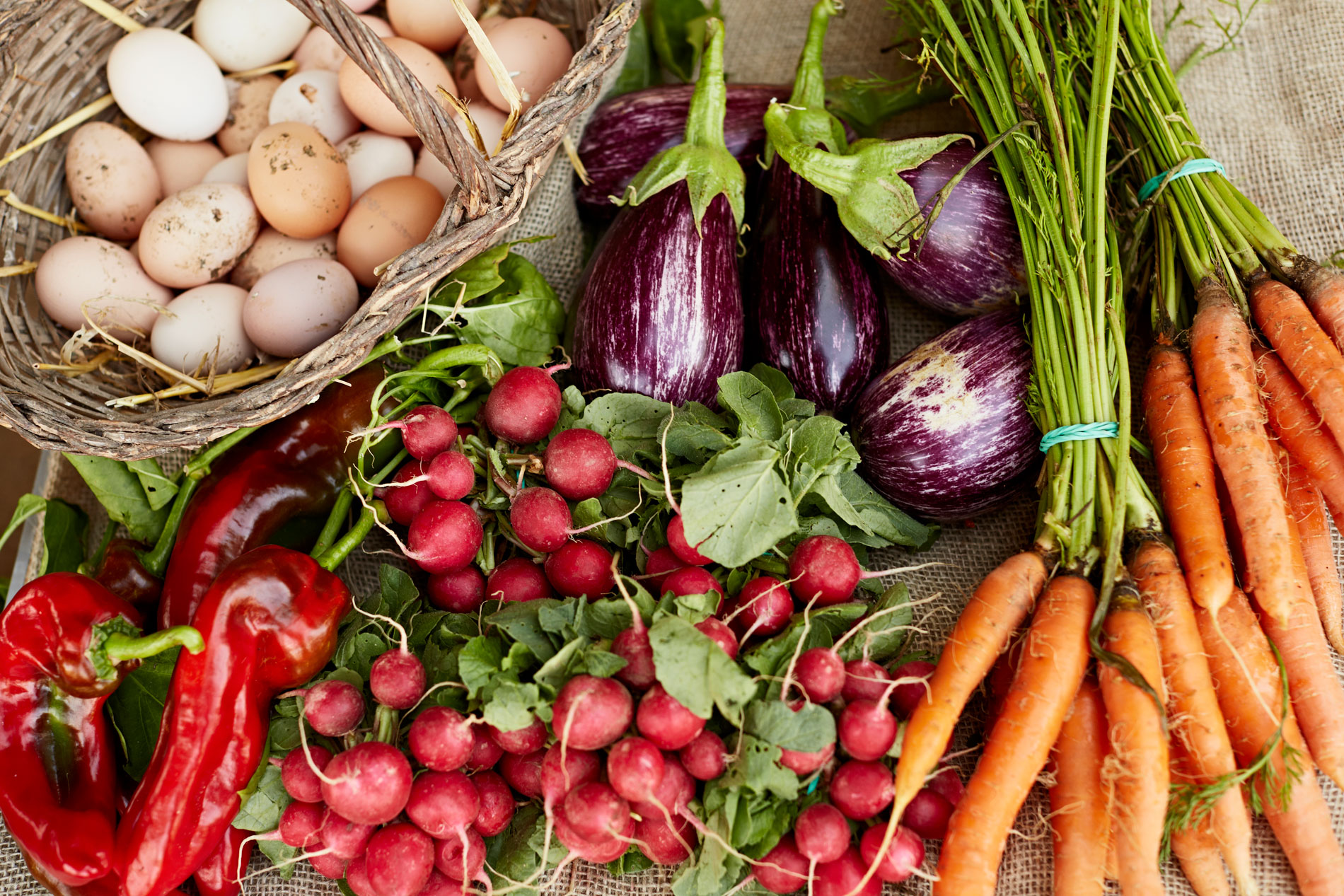 Picture of fresh produce and eggs
