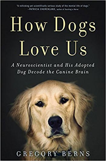 Book cover of How Dogs Love Us by Gregory Berns