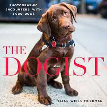 Book cover of The Dogist by Elias Weiss Friedman