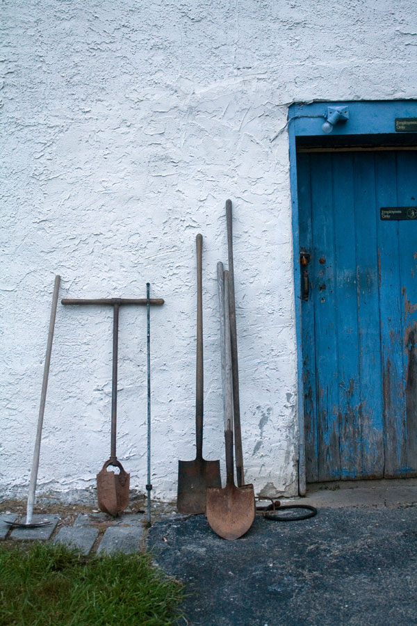 Gardening shovels propped up against a shed