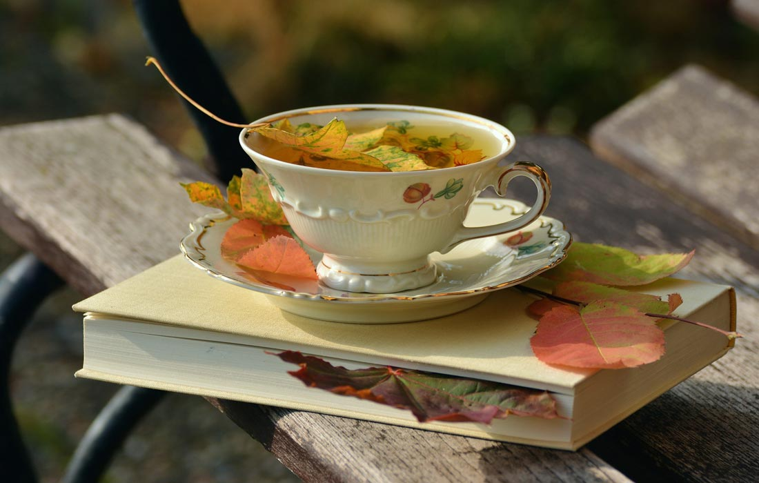 Tea cup and book scattered with autumn leaves.