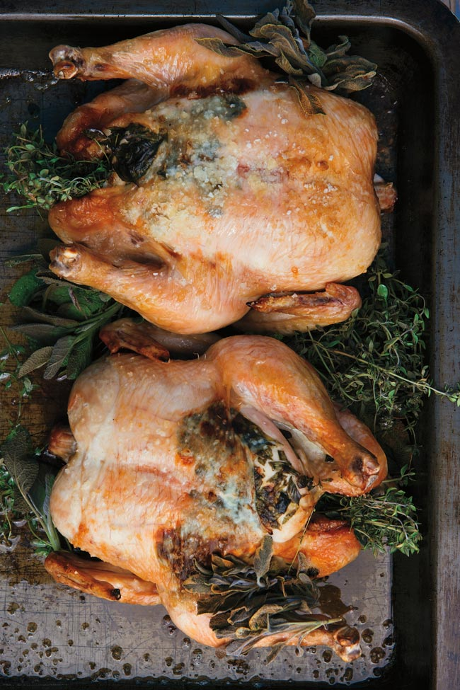 A pair of roast chickens.