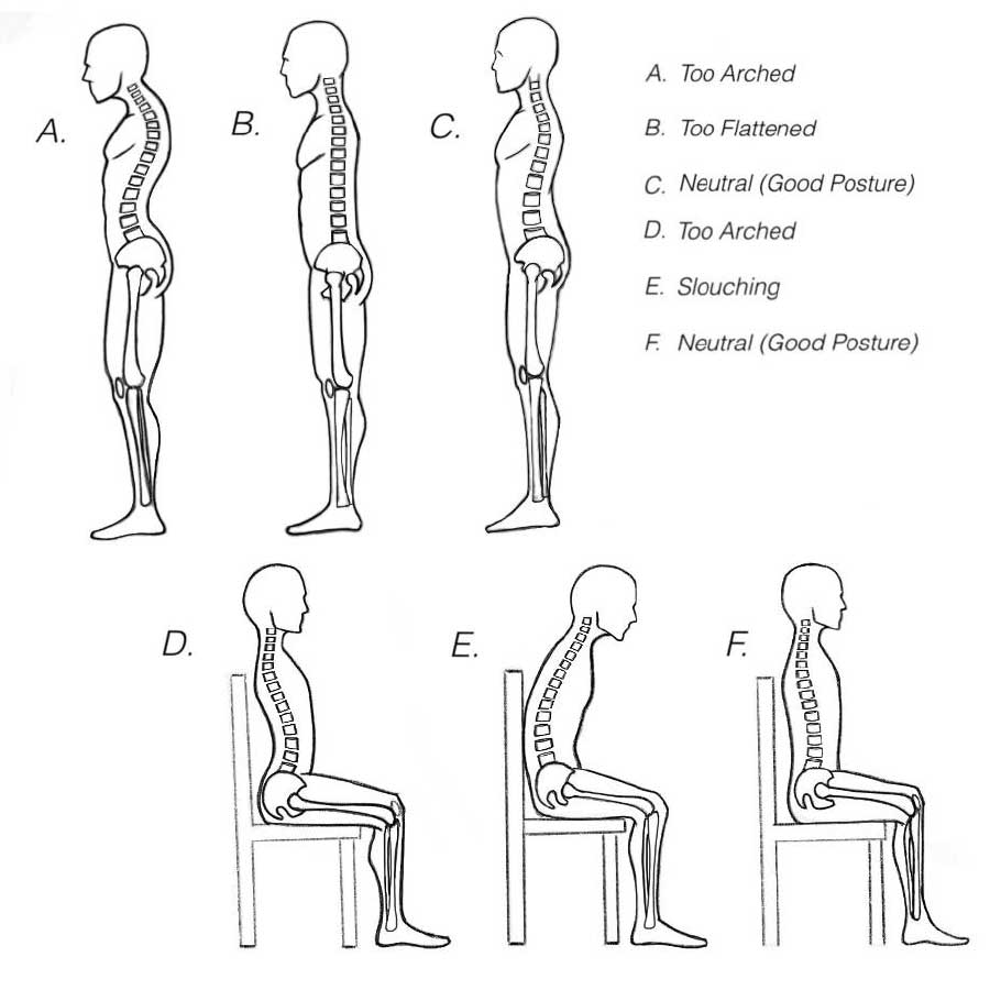 An illustration of several spine positions including the neutral spine.