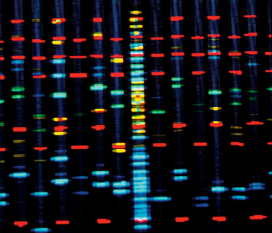 The code of the Human Epigenome consisting of strips of red, blue, green and yellow lights on a black background.