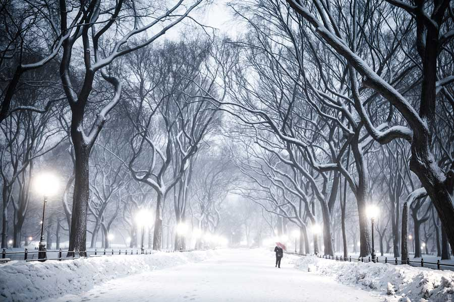 A man walking on a snow covered path in central park.