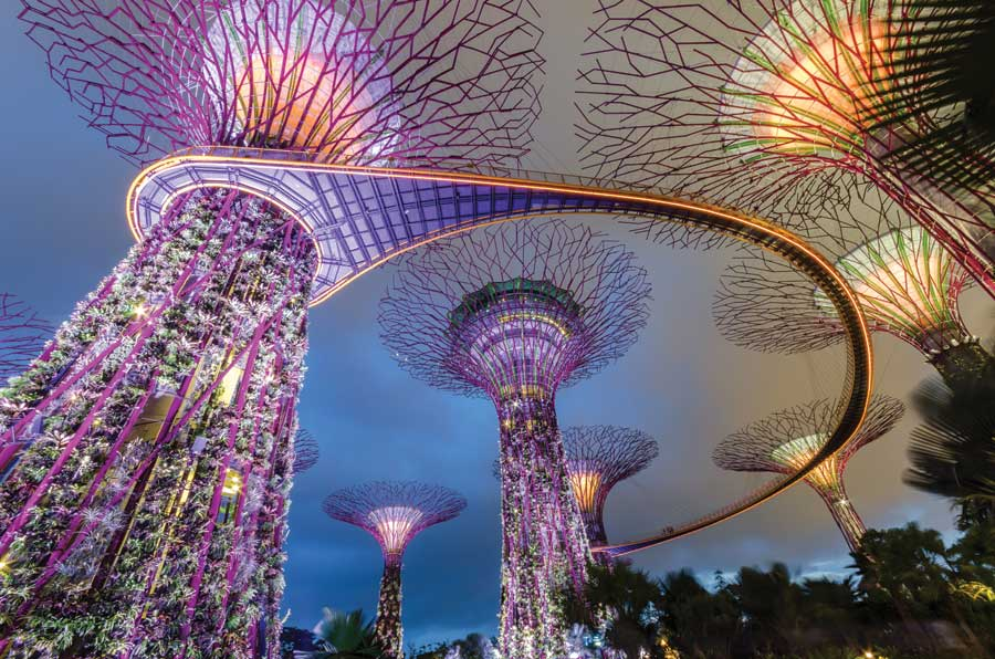 Supertree Grove in Gardens by the Bay, Singapore.