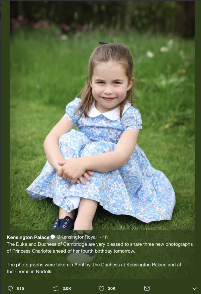 Princess Charlotte's portrait for her fourth birthday