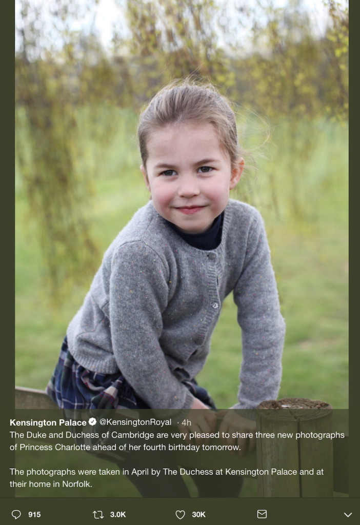 Princess Charlotte portrait for her fourth birthday
