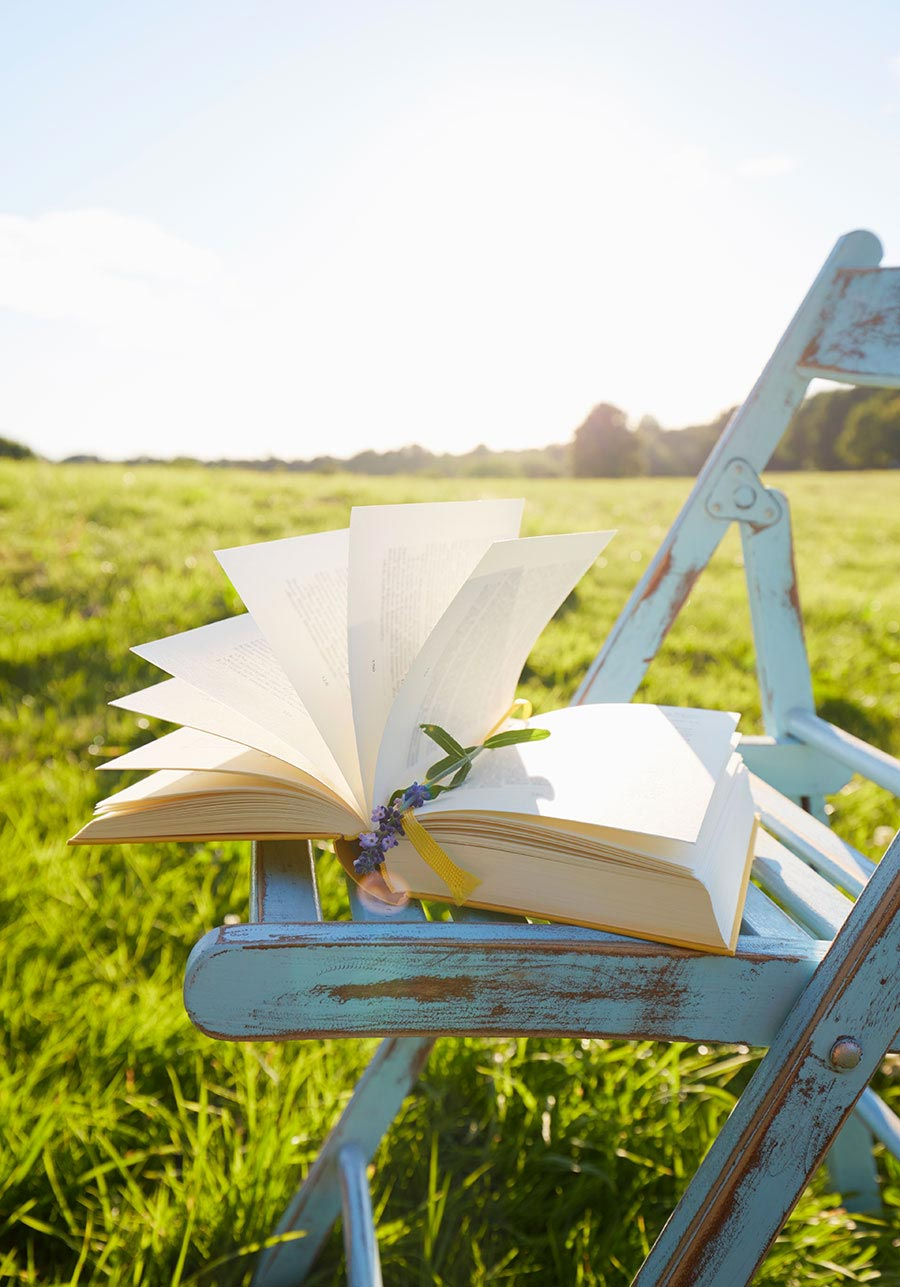 An open book on an antique chair set in a field.