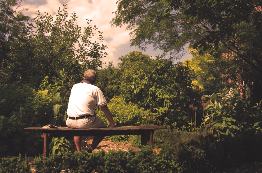 Dear Garden, I Have Changed: How a Connection With Nature Helped Me Through  My Cancer Diagnosis - Everything Zoomer