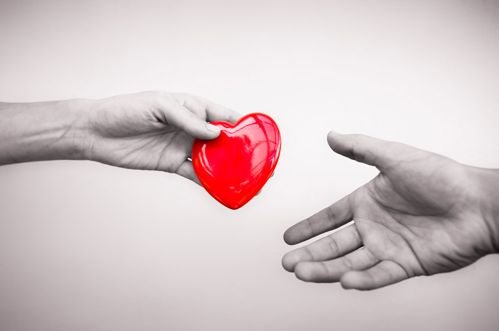 Symbol of charity and donation: Two hands holding a heart
