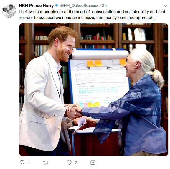 Prince Harry with Jane Goodall