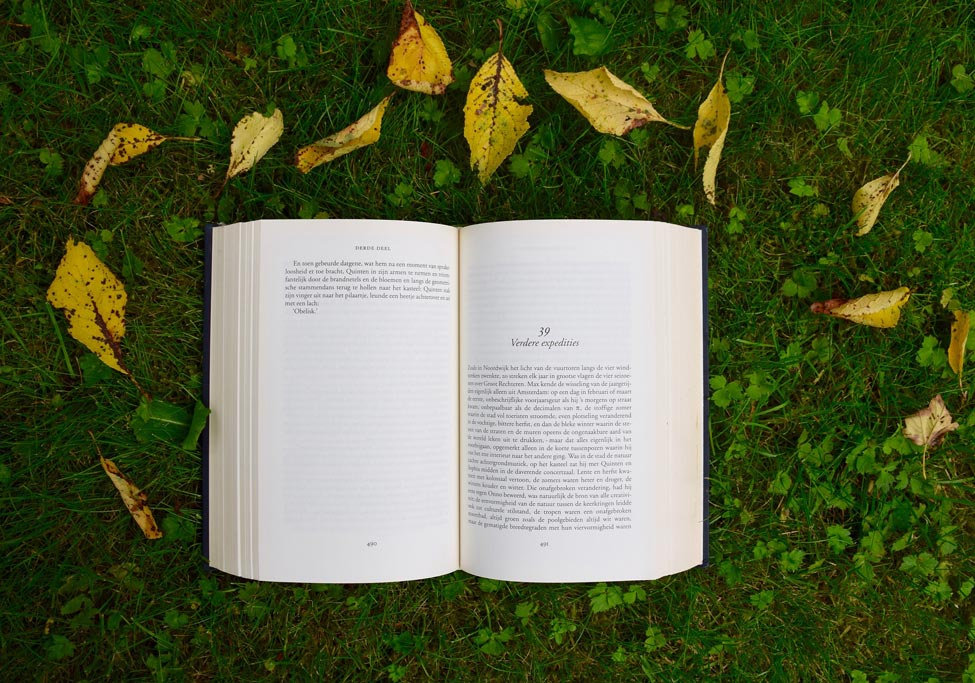 An open book on the lawn surrounded by leaves.