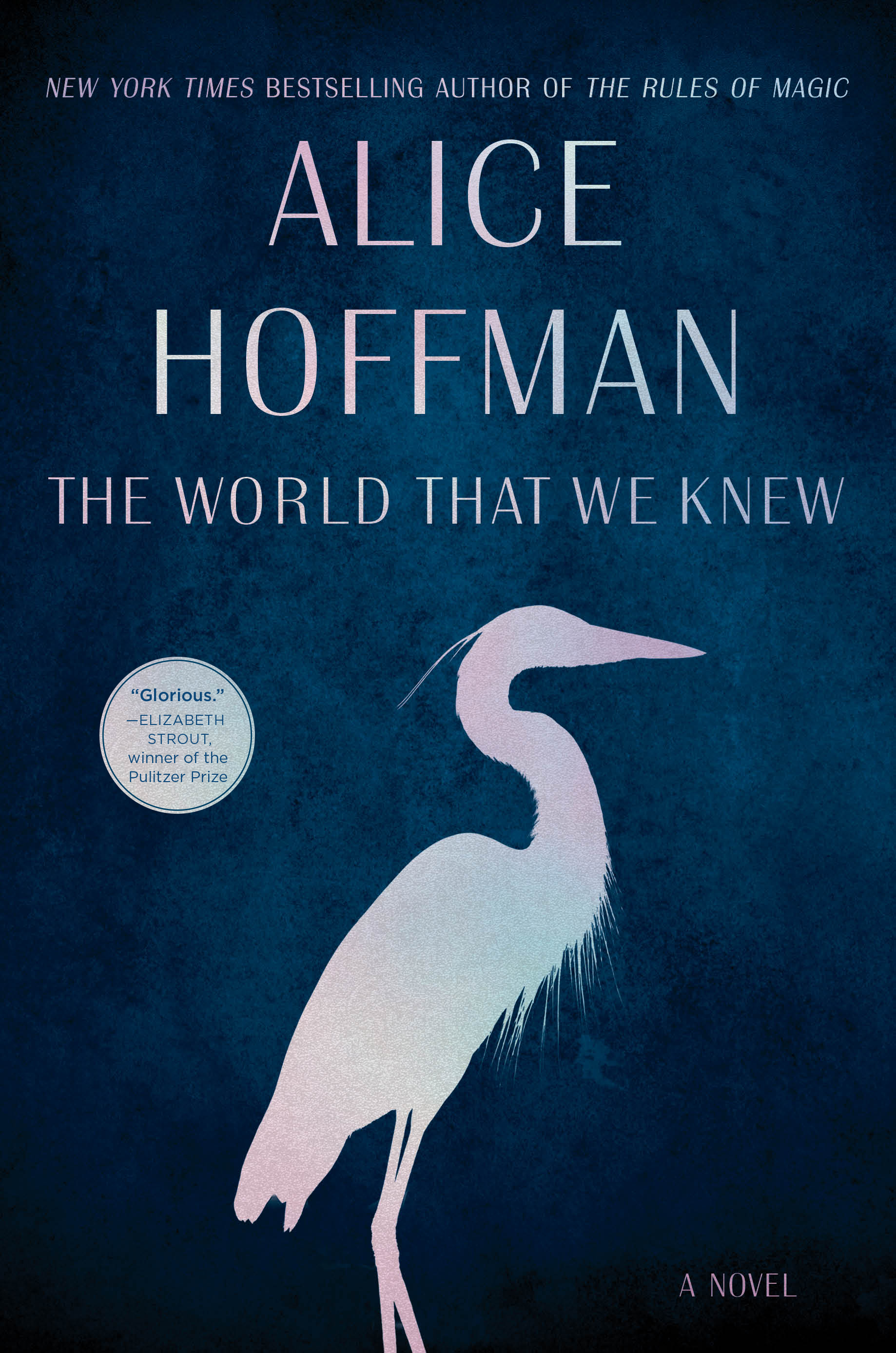 Book cover for The World That We Knew by Alice Hoffman.