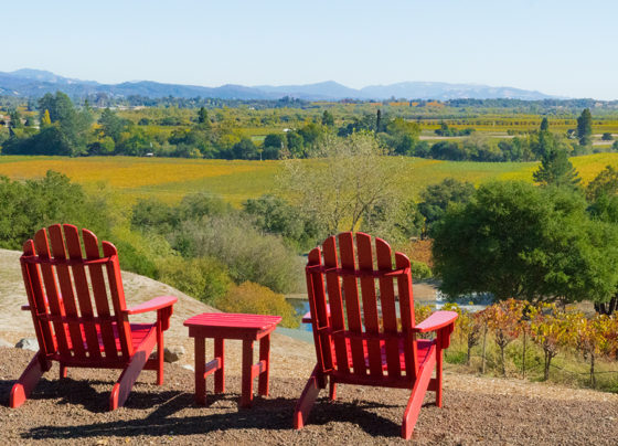 Road Trip: Discover Sonoma County's Rich Palette