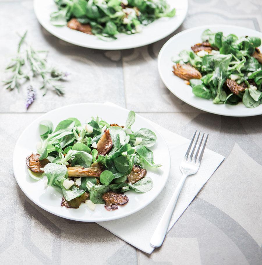 Several plates of mushrooms on salad