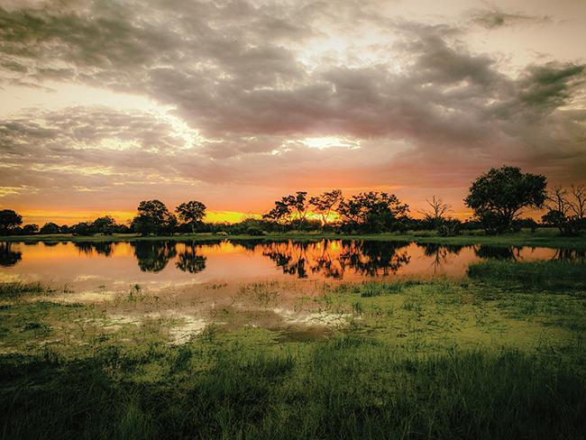 Zimbabwe's Hwange National Park.